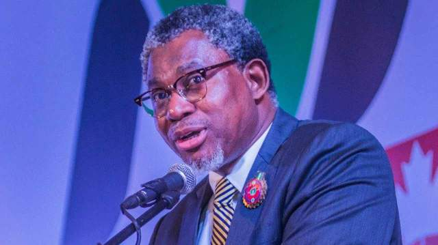 FG's regional mining projects'll galvanise solid minerals sector towards GDP growth — Adegbite