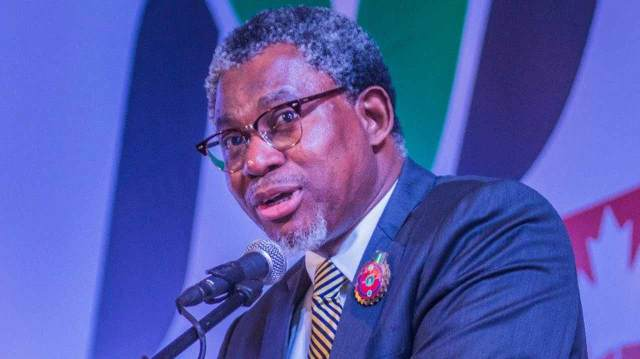 Nigeria's solid minerals sector driven by highly professional brains — Adegbite