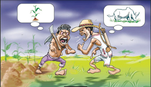How to end farmers/herders' crises — YCE, Afenifere, Agbekoya, Hunters