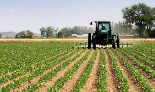 We're treating agriculture as moneymaking business — FG
