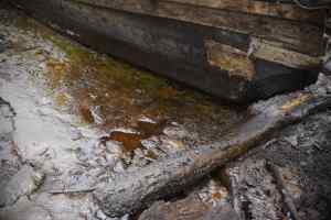 OIL SPILL: Farmers, fisherman cry out over loss of livelihood in Bayelsa community