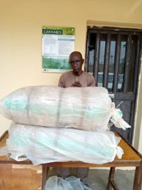NDLEA arrests wanted Abia drug supplier, seizes 100kg of cocaine, cannabis