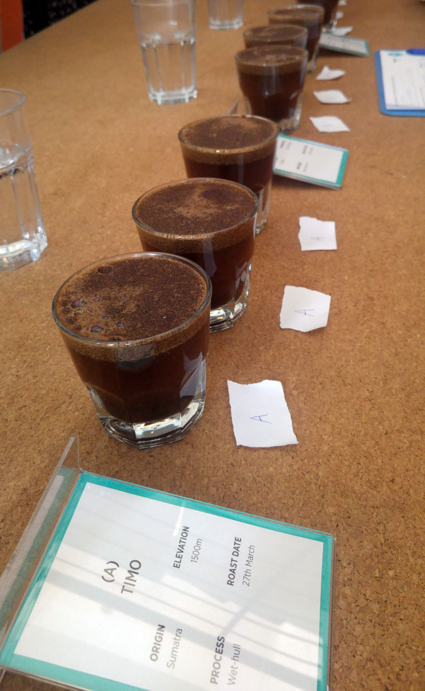 Perk Coffee Cupping