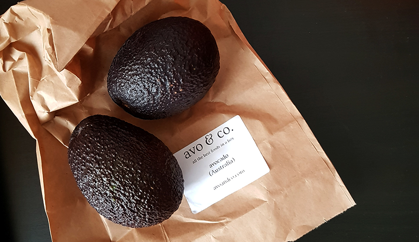 Avo and Co Avocados