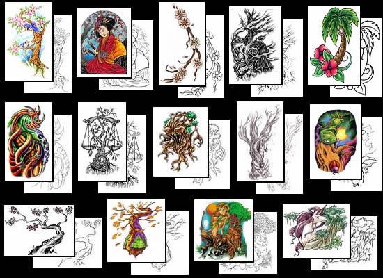 Size:480x640 - 45k: Tree Tattoo Designs