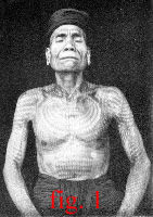 fig.1 Click for a closer look at this Dayak elder's tattoos