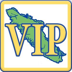 VIP Square v2 Logo