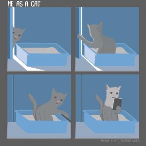 Als ik een kat was...