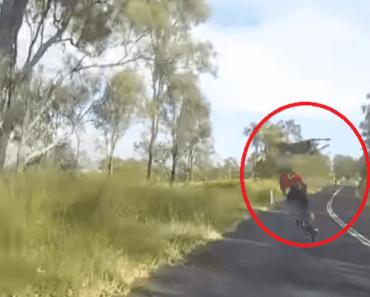 kangoeroe wielrenner australia day