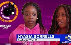 Hanifah Davis Awarded Donkey Of The Day For Brutalizing Twin Black Girls