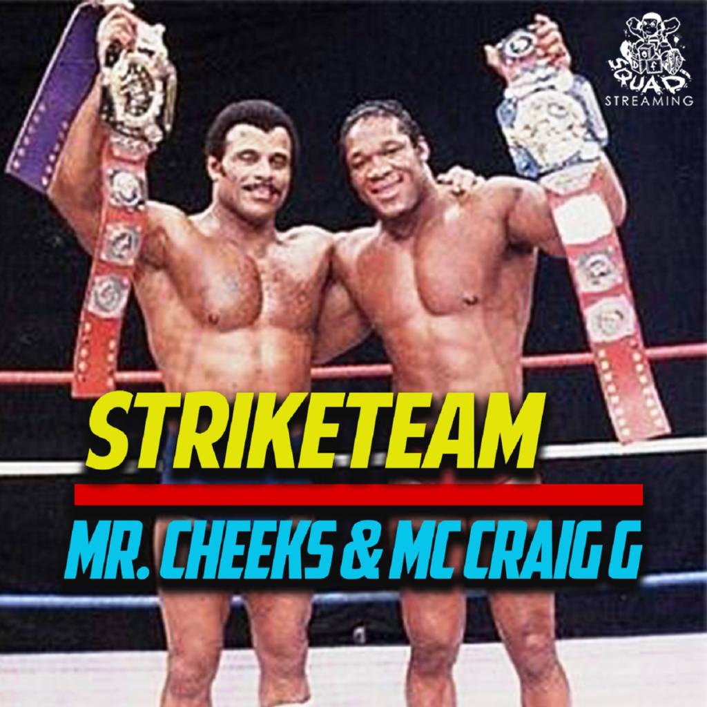 MP3: STRIKETEAM (Mr Cheeks & Craig G) - Rebel Music [Prod. Pete Rock]