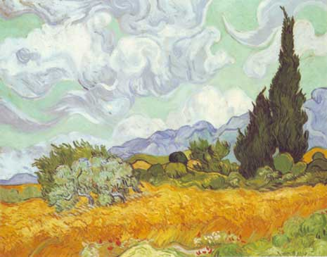 cornfield-with-cypress.jpg