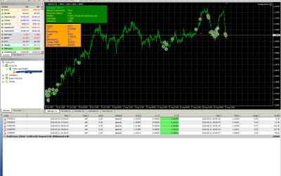 VPX made 20% profit in one day