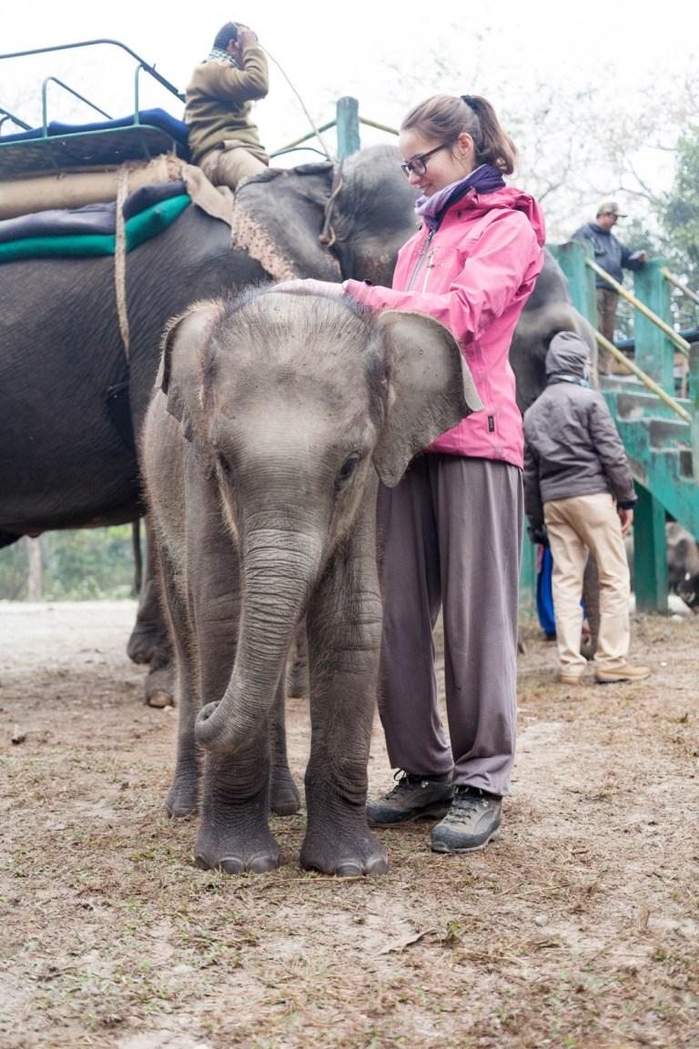 Ivanka se slonem