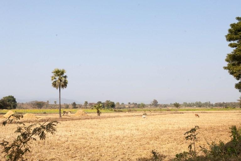 Barmská krajina