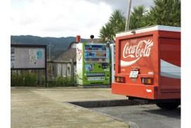 生態研究 自動販賣機