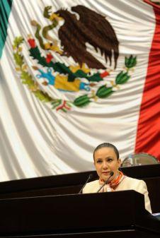 Diputada federal del PAN Consuelo Argüelles Loya