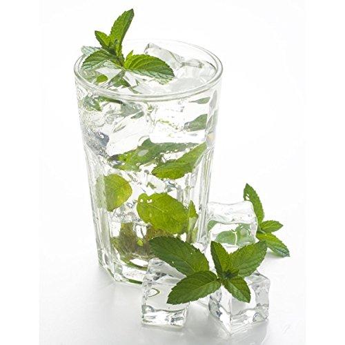 E-Liquide menthe glaciale 30 ml – Alfaliquid – Sans tabac ni nicotine – Vente interdite au moins de 18 ans – 0 mg