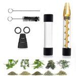 Mini Glass Blunt – Livré avec Une Bouteille en Verre, Un kit de Nettoyage – Pipe à cigares pour Tabac, Herbes sèches, thé, Feuilles d'herbes et épices-Gold