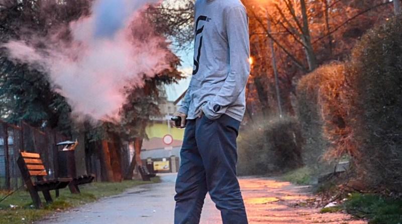portable vapor