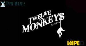 twelve monkeys2