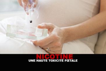 NICOTINE: High fetal toxicity
