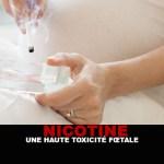 NICOTINE : Une haute toxicité fœtale