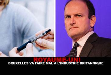 REGNO UNITO: Bruxelles danneggerà l'industria britannica.