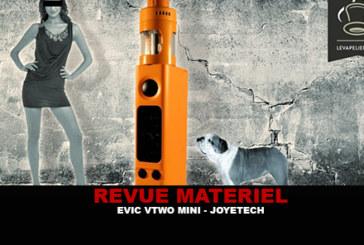 סקירה: EVIC VTWO MINI על ידי