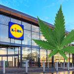 סוויצר: חנויות LIDL ימכרו בקרוב מוצרי חשיש.