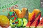 REVUE / TEST : Concombre & Fruits (Gamme Haiku) par Le Vaporium