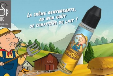 REVUE / TEST: Mister Magoose by C-liquid France