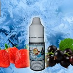 REVIEW / TEST: Frozen Ladybug (Vaping Animals Range) by OhMist