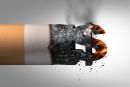 БЕЛЬГИЯ: косвенный налог на табак приносит в 123,8 еще миллионы 2018.