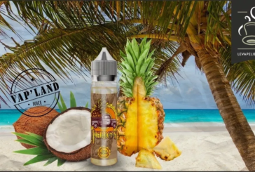 REVIEW / TEST: Juicy by Vap'Land-Juice