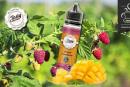 REVUE / TEST : Mangue Framboise (Gamme Tasty) par Liquidarom