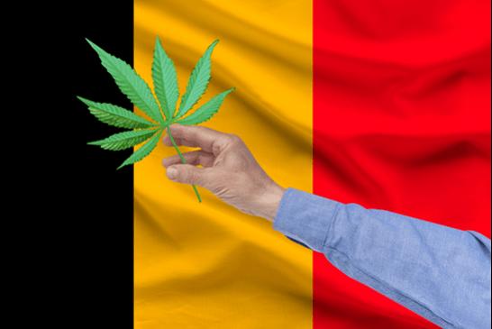 """BELGIEN: Harmonisierung des Verkaufs von """"legalem Cannabis"""" (CBD) seit dem 1er Juli!"""