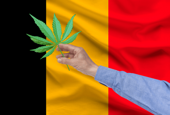 "BELGIUM: Harmonization of the sale of ""legal cannabis"" (CBD) since the 1er July!"
