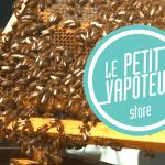 """BIODIVERSIDAD: ¡Las colmenas están invitadas en el techo de la compañía de cigarrillos electrónicos """"Le Petit vapoteur""""!"""
