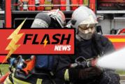 ΔΙΑΦΟΡΑ: Μια μπαταρία ηλεκτρονικών τσιγάρων προκαλεί πυρκαγιά στην Αλσατία, ένας σκύλος χάνεται…
