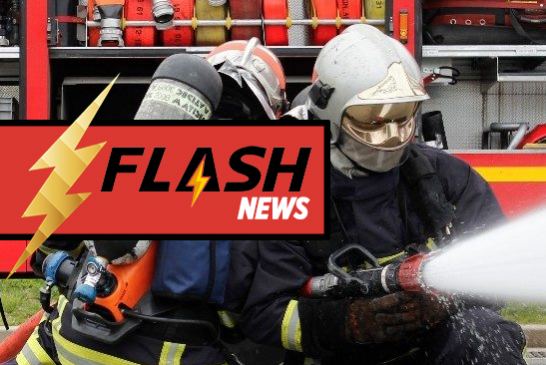 MISCELLANEOUS: A battery of e-cigarettes causes a fire in Alsace, a dog perishes…