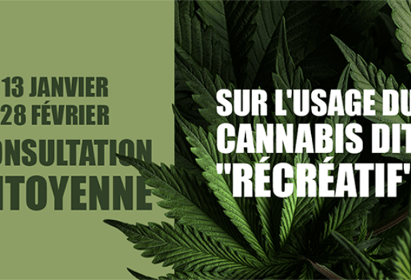 CBD / CANNABIS: The government is launching a citizen consultation on the internet!