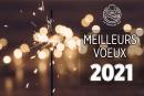MEJORES DESEOS: ¡Unas palabras de los editores para el año 2021!