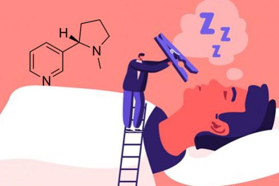 STUDY: Nicotine would have an impact on sleep and prevent deep sleep.