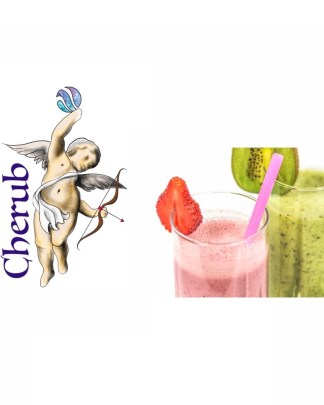 Cherub Strawberry Kiwi E Liquid Juice
