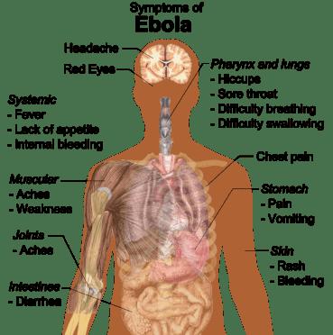 Ebolasmitten kommer- frykter du det dødelige viruset?