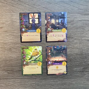 Critter cards with matching locations.