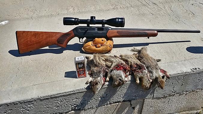 savage 22 wmr semi auto rifles