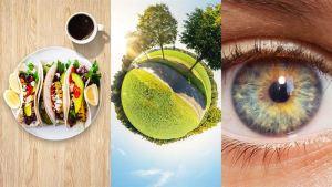 Paulig asettaa uudet strategiset vastuullisuustavoitteet vuodelle 2030 ruoan kestävän tulevaisuuden edistämiseksi