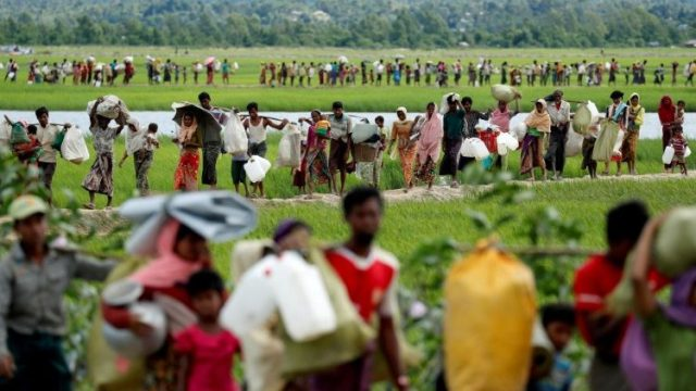 Rohingya refugees who crossed the border from Myanmar into Bangladesh walk as they try to reach refugee camps in Palang Khali
